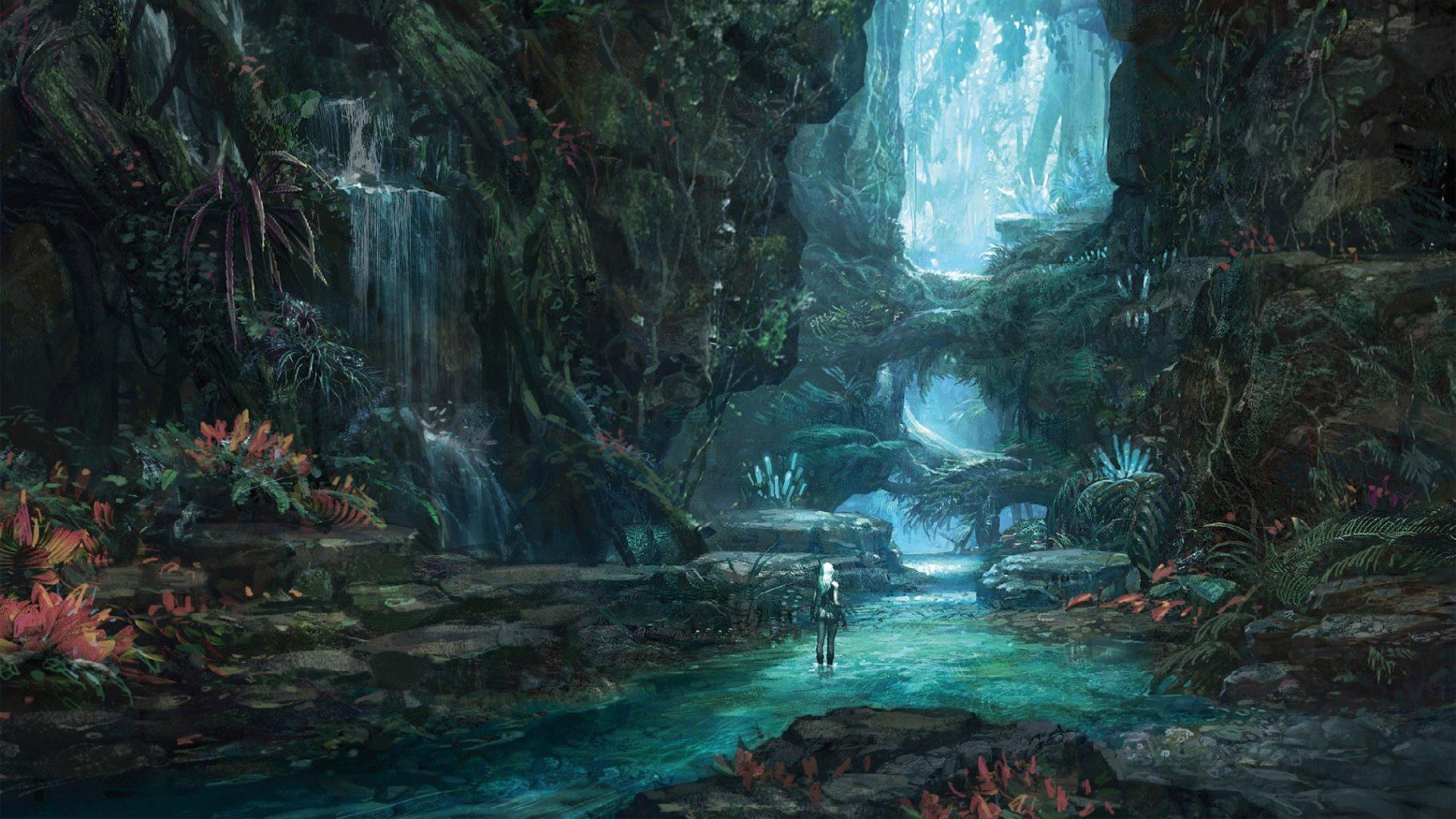 imagenes de bosques encantados