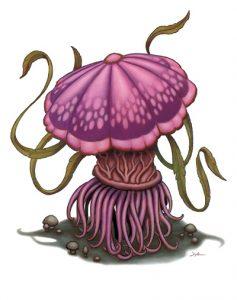fungus-violet